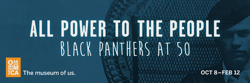 oak-013069-1-j-led_black-panthers_912x304
